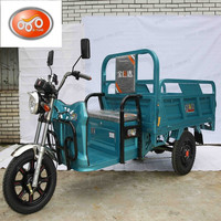 60V 1000W Cargo Rickshaw Adult Big Motor 3 Wheel Electric Tricycle