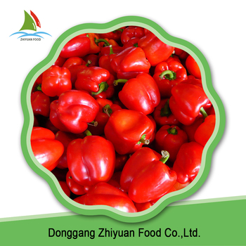 China fresh material new season delicious frozen red bell pepper