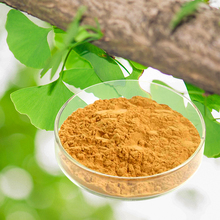 chinese herb extracts powder machine ginkgo biloba extract herbal medicine