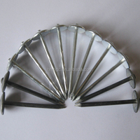 Umbrella Head Galvanised Nails for Roofing