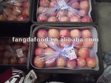 Red Delicious Fuji Apple in China