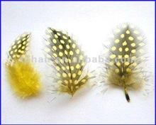 2012 Hot SellerYellow Colored Chicken Feather Extensions