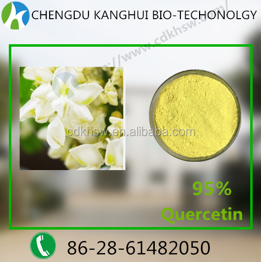 100% natural plant extracts powder 95% Quercetin dihydrate 6151-25-3