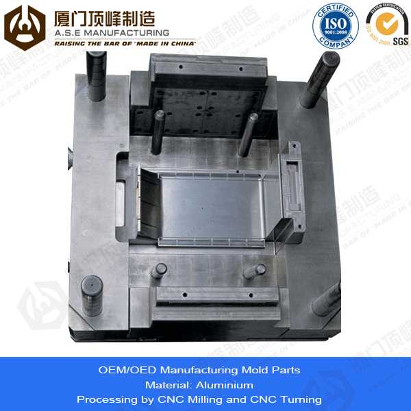 Xiamen A.S.E OEM Manufacturing Mold Parts for philippine native products