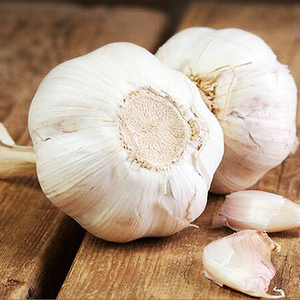 fresh garlic , bulk garlic, garlic exporters china