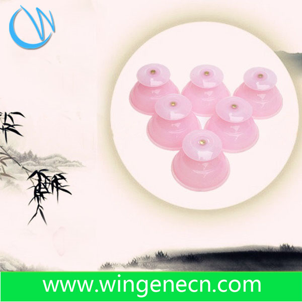 Traditional medical therapy silicone Massage cupping set