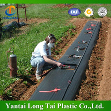 weed/grass control mat, plastic ground cover,agricultural black plastic ground cover