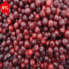 2018 Grade A IQF Fruit Frozen sour Cherry