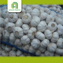 farm price of garlic peeling machine fresh garlic producers with high quality