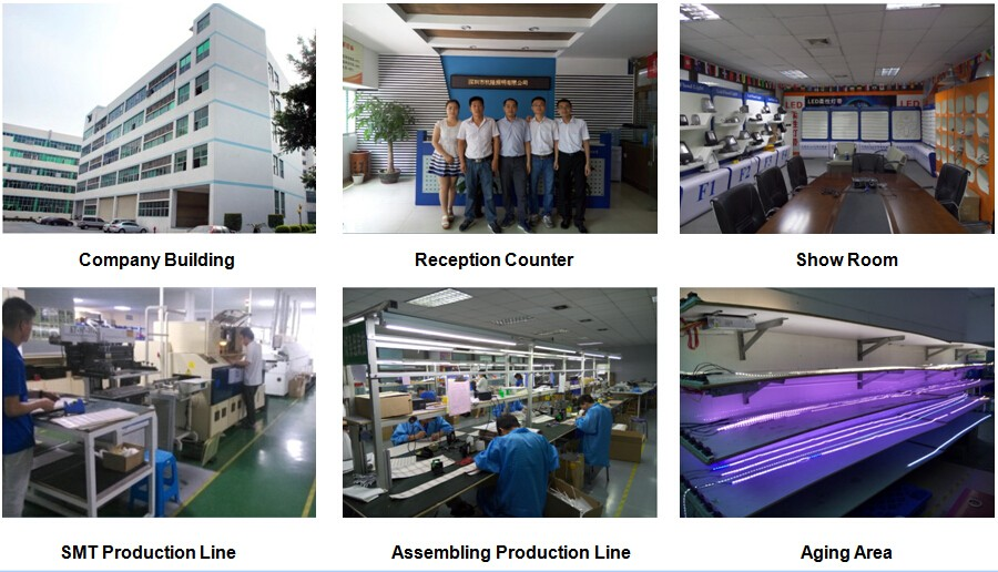 Hanron Lighting Factory Tour.jpg