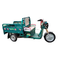 auto cargo tricycles on sales for adult