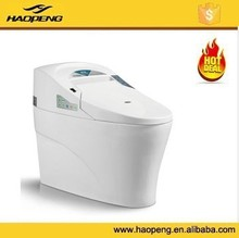 Sanitary Intelligent Toilet With White Color, Environmental Smart WC Toilet, Water Saving Automatic Flush Toilet