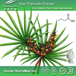 100% Natural Herbal Extract Saw Palmetto Extract