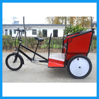City Bike Taxi Pasengers Vehicle 3 Wheel Taxi Bike for Sale