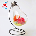 Hot Sale Bulb Shape Glass Terrarium Table Decoration with Iron Stand