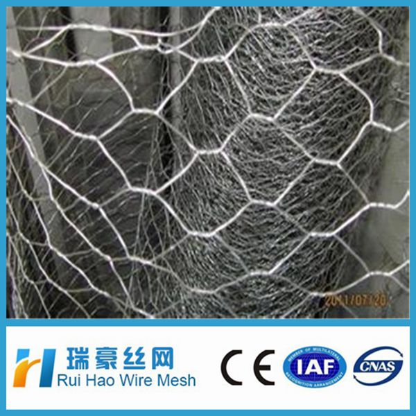 Lowest price hexagonal chicken wire mesh(Anping factory)