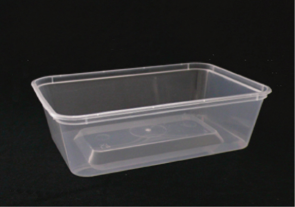 Rectangular Plastic Takeaway Container