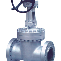 WFE Pressure Seal BW Carbon Flexible Wedge Gear Operation Gate Valve