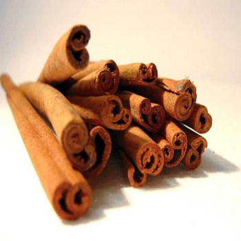 100% Natural Pure Ceylon Cinnamon bark oil Price Cinnamomum Zeylanicum Extract For Perfume