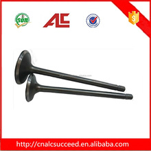 High Quality Motorcycle CG125 Engine Valve