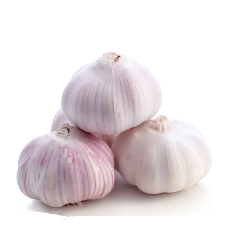 Manufacturer price 3p chinese nature garlic for sale