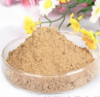Natural Indian Spicy Seasoning Powder flavor, high essence factory quality for roasted food cooking barbecue etc.