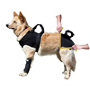 Neoprene Dog Lift Support Harness For Canine Aid