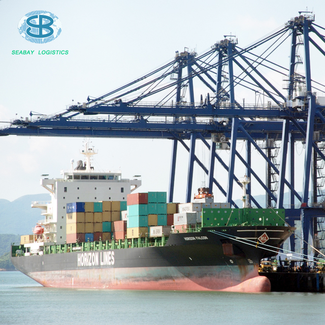 fast professional ocean freight cargo transportation service