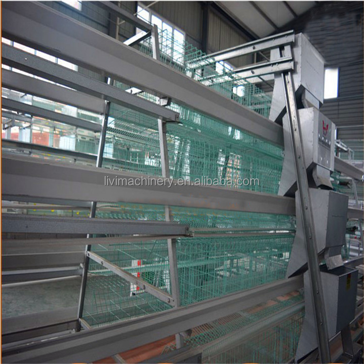 Chicken Layer Cage Automatic / Chicken Egg Layer Cages with Chicken Shed Design