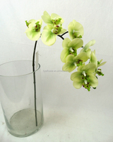 Light Green 12 Flower Real Touch Mini Butterfly Orchid for Wedding Decoration