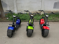 2 wheel electric scooter Adult harley scooter mini machine motor