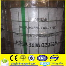 "3/4"" 1/2"" 1"" 1/4"" 3/8"" Galvanized Welded Wire Mesh Roll"