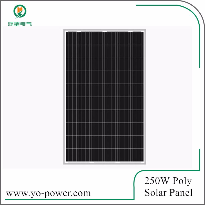250W poly daylight solar panel