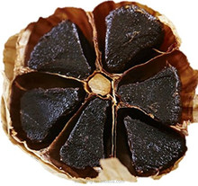 Aged Organic Black garlic From Black Garlic Fermenter