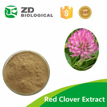 Natural Red Clover Powder Extract factory price