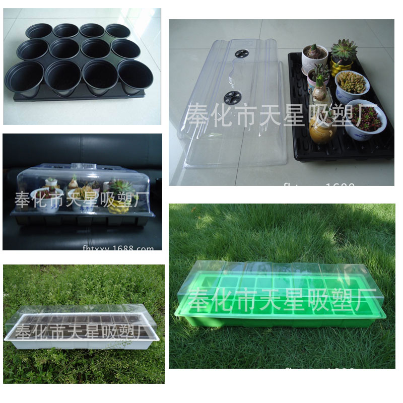 Hatched seedlings Strong resistance Fish Egg Incubator