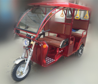 india battery passenger e rickshaw,passenger tricycle