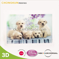 3D Lenticular Plastic Card Postcard,apple gift card,3d dog pictures