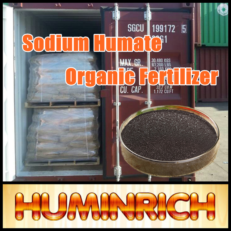 Huminrich Water Soluble Leonardite Used As Feed Additive Fish Fertilizer Sodium Humate