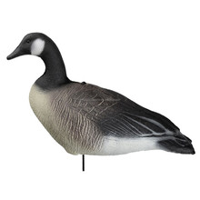XINGYUAN inflatable Canada goose decoys for sale, foam Canada goose decoys