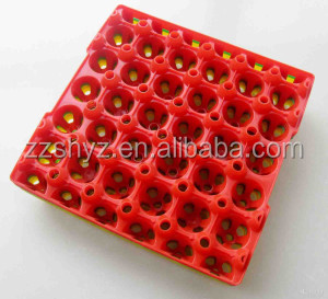 China Supplier PP Plastic Transport Egg Tray Crates