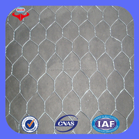 Anping Longyi factory twist chicken wire mesh/double twisted hexagonal gabion mesh(ISO factory & exporter)