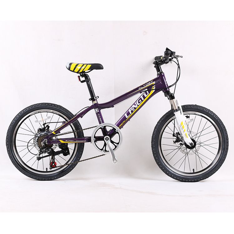 Customized professional high quality carbon mountain bike