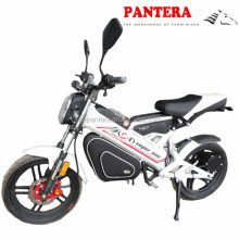 PT-E001 Folding 1500w Brushless Motor Europe Electric Bike Factory