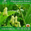 Natural Herbal Ingredient Plant Extract Fragrant Solomon's Seal Rhizome Extract Polygonatum Odoratum Extract Powder
