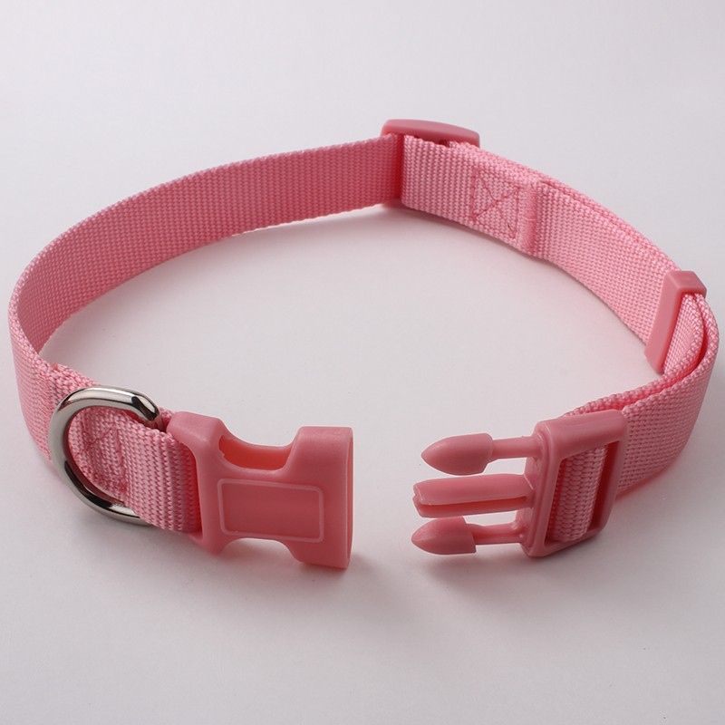New arrival cheap personalized plain nylon webbing decorative pink floyd dog collar