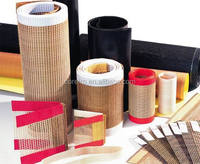 PTFE aramid nomex glass fabric and belt