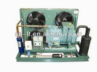 R404a Refrigerant Semi-hermetic Bitzer Piston Compressor Air refrigeration condensing unit For Cold Storage