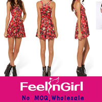 Wholesale Drop Shipping Newest Red Strawberry Women Skater Dress