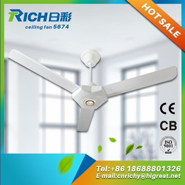 Professional 110v luxury ceiling fan manufacturers